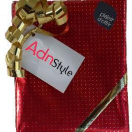 carte cadeaux adn style lesneven